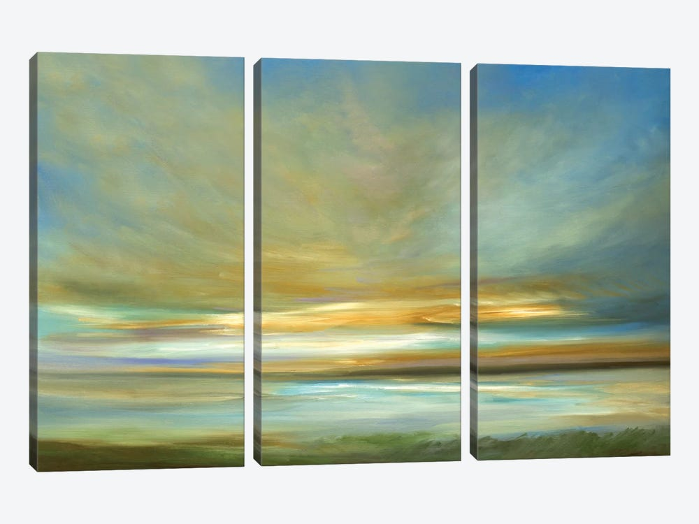 Light On The Dunes by Sheila Finch 3-piece Canvas Art