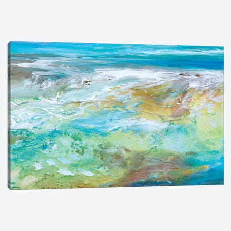 Tide Pool  Canvas Print #SHE22} by Sheila Finch Canvas Print