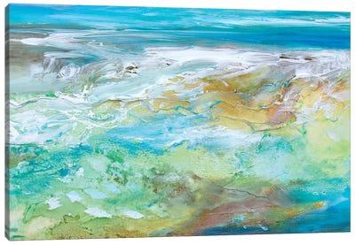 Tide Pool  Canvas Art Print