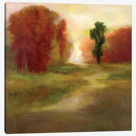 Autumn Trees Canvas Print #SHE27} by Sheila Finch Canvas Art