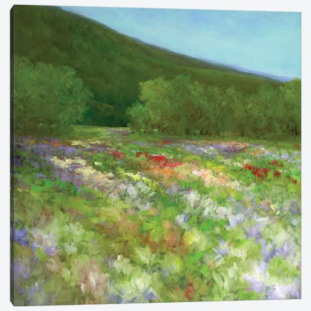 Flowers Of Half Moon Bay II Canvas Print #SHE29} by Sheila Finch Canvas Print