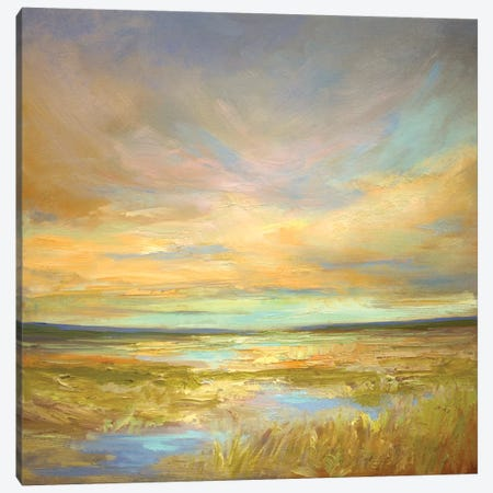 Morning Sanctuary Canvas Print #SHE2} by Sheila Finch Canvas Print
