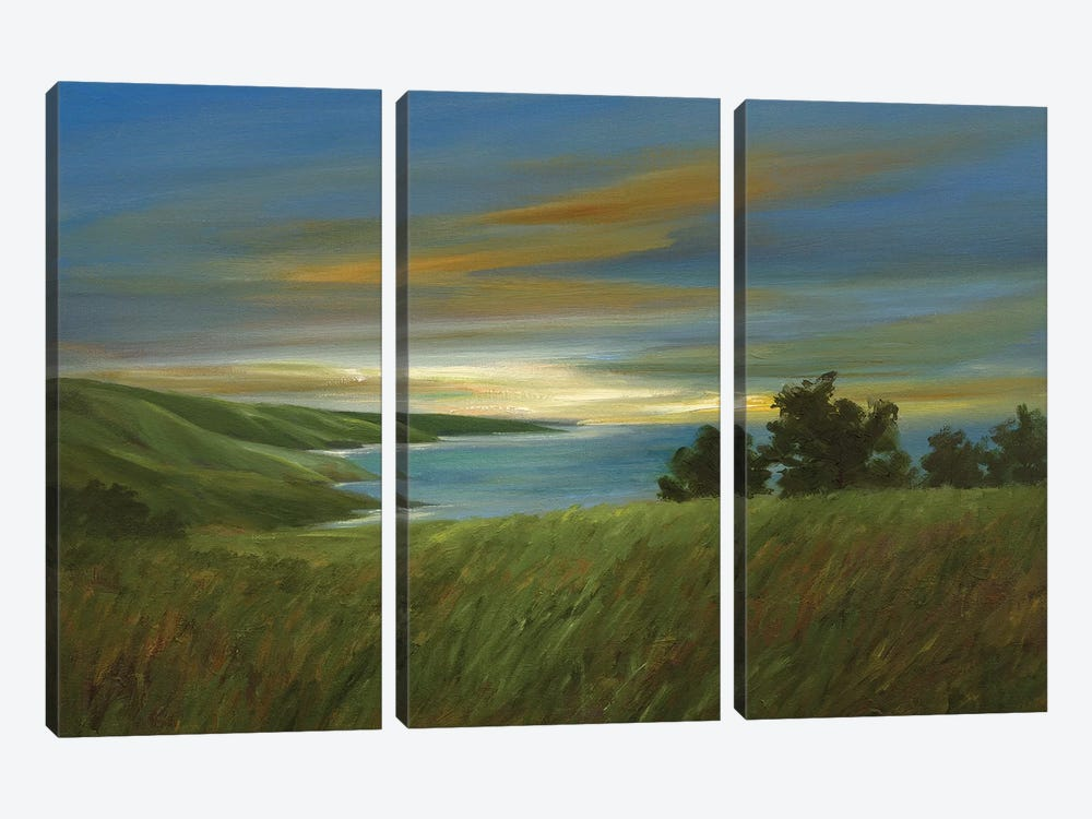 Sky At Dusk by Sheila Finch 3-piece Canvas Art Print