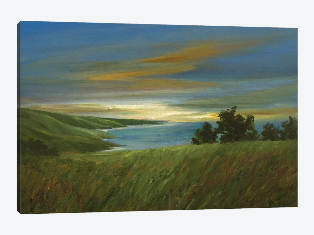 Sky At Dusk by Sheila Finch 1-piece Canvas Print