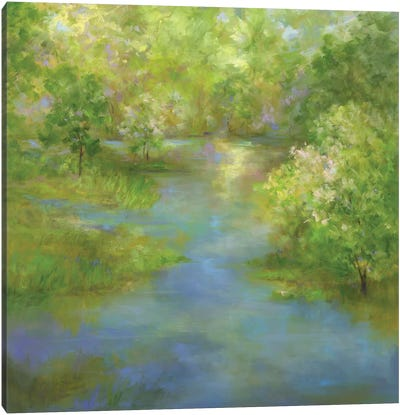 Spring Lake Reflections Canvas Art Print