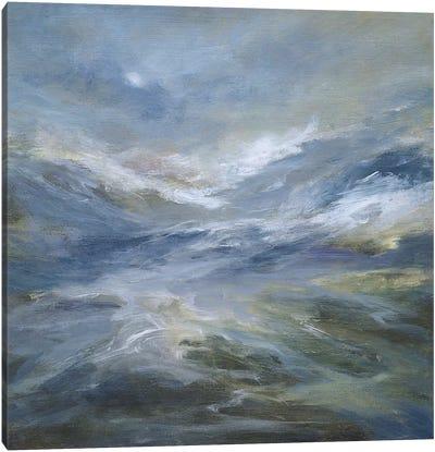 Calming of the Sea Canvas Art Print