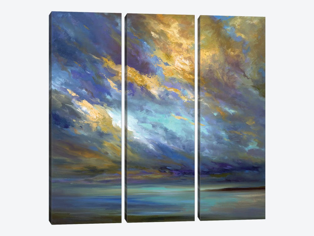 Coastal Clouds  by Sheila Finch 3-piece Canvas Artwork