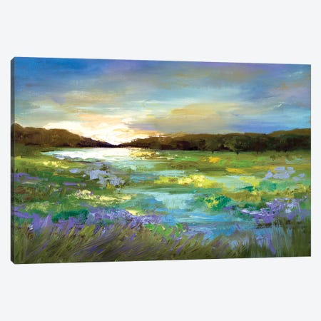 Radiant Evening Canvas Print #SHE3} by Sheila Finch Art Print