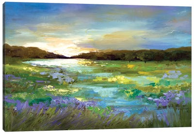 Radiant Evening Canvas Art Print
