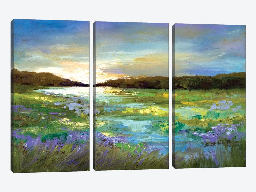 Radiant Evening by Sheila Finch 3-piece Canvas Artwork