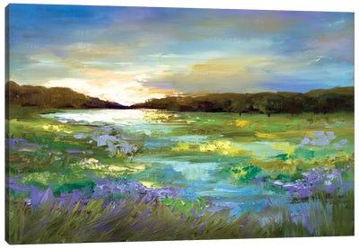 Radiant Evening Canvas Art Print