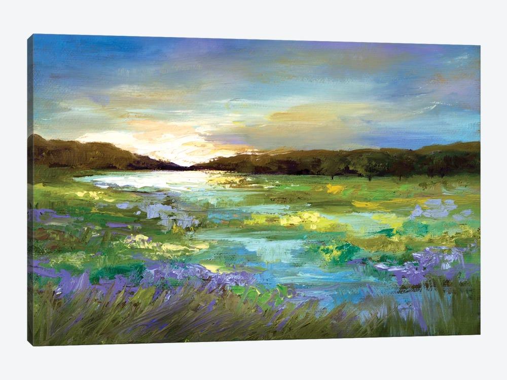 Radiant Evening by Sheila Finch 1-piece Canvas Wall Art