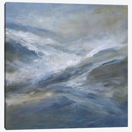 January Seas Canvas Print #SHE40} by Sheila Finch Canvas Print