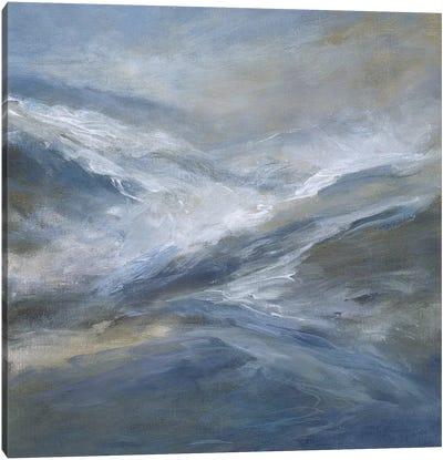 January Seas Canvas Art Print