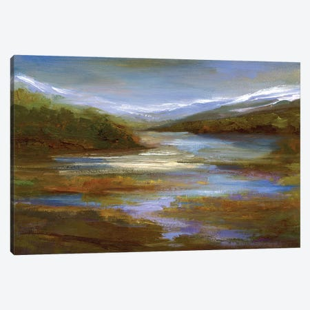 Mountain Stream Canvas Print #SHE46} by Sheila Finch Canvas Art