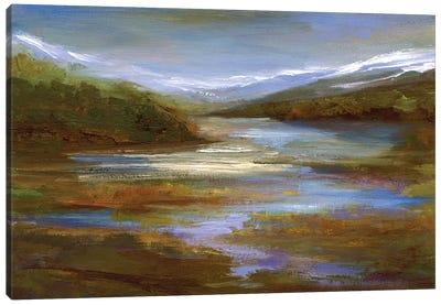 Mountain Stream Canvas Art Print