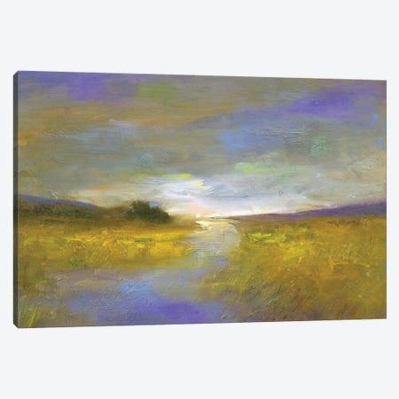 Mustard Fields at Dusk Canvas Print #SHE47} by Sheila Finch Canvas Art