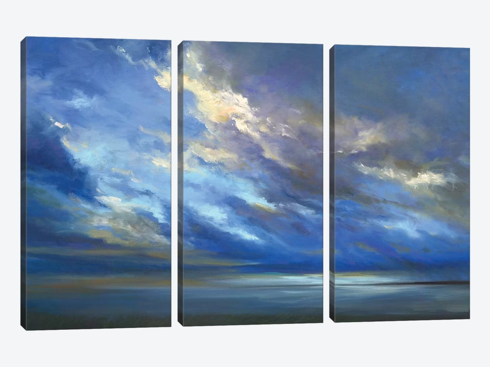 Coastal Sky II by Sheila Finch 3-piece Canvas Wall Art