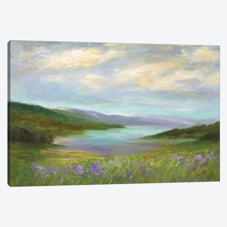 Crystal Springs Vista Canvas Print #SHE61} by Sheila Finch Canvas Art Print