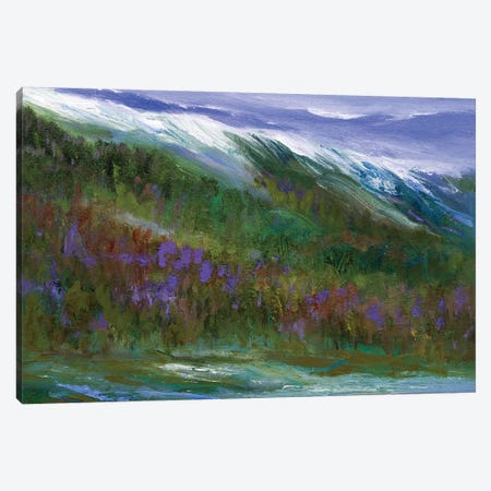 Sierras Canvas Print #SHE63} by Sheila Finch Canvas Print