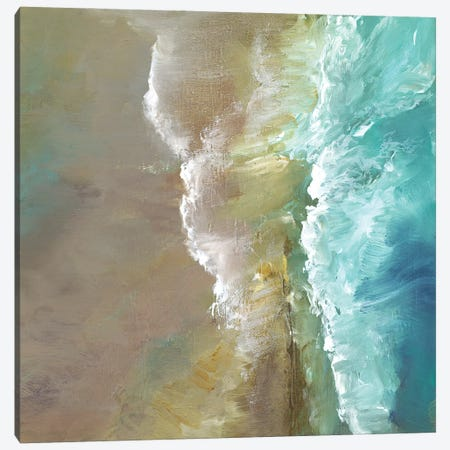 Aerial Coast III Canvas Print #SHE67} by Sheila Finch Canvas Artwork