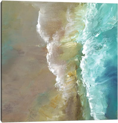 Aerial Coast III Canvas Art Print