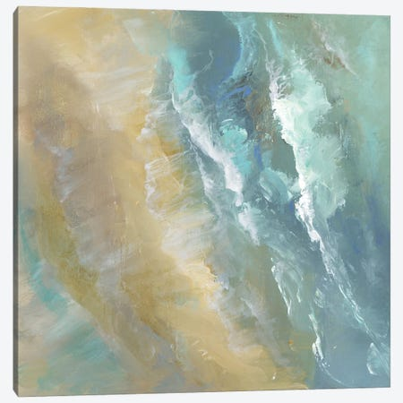 Aerial Coast IV Canvas Print #SHE68} by Sheila Finch Canvas Art Print