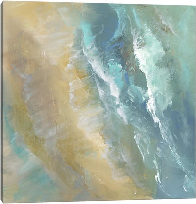 Aerial Coast IV Canvas Art Print