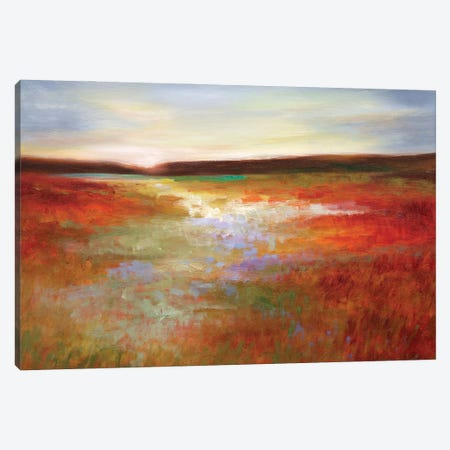 Light Across the Meadow I Canvas Print #SHE71} by Sheila Finch Canvas Artwork