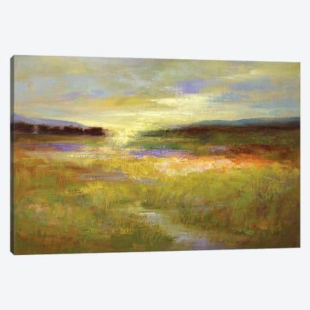 Light Across the Meadow II Canvas Print #SHE72} by Sheila Finch Canvas Artwork