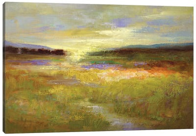 Light Across the Meadow II Canvas Art Print