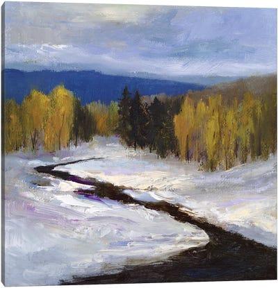 Mountain Colors II Canvas Art Print