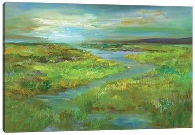 Wetlands in Spring Canvas Art Print