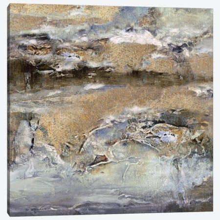 Gilt Sandstone I Canvas Print #SHF1} by Scherrer Finch Canvas Artwork