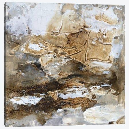 Gilt Sandstone II Canvas Print #SHF2} by Scherrer Finch Canvas Artwork