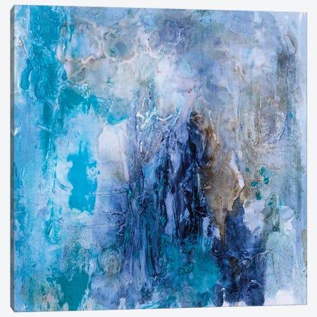 Tidal Flow I Canvas Print #SHF3} by Scherrer Finch Canvas Art