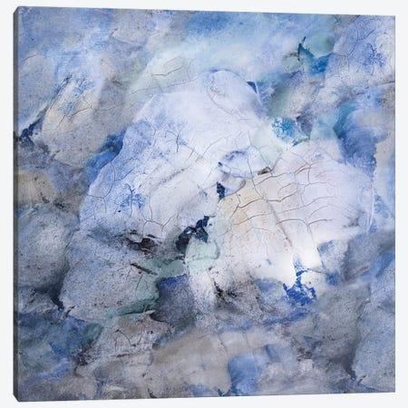 Tidal Flow II Canvas Print #SHF4} by Scherrer Finch Art Print