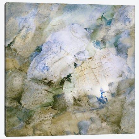 Tidal Flow III Canvas Print #SHF5} by Scherrer Finch Canvas Art Print