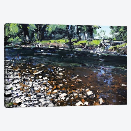 Creek Montana Canvas Print #SHG12} by David Shingler Canvas Wall Art