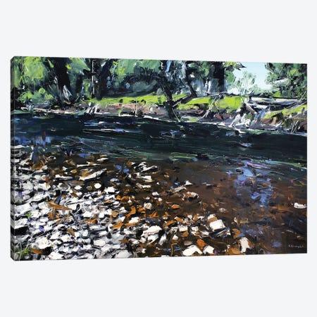 Creek Montana Canvas Print #SHG12} by David Shingler Canvas Wall Art