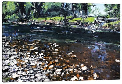 Creek Montana Canvas Art Print