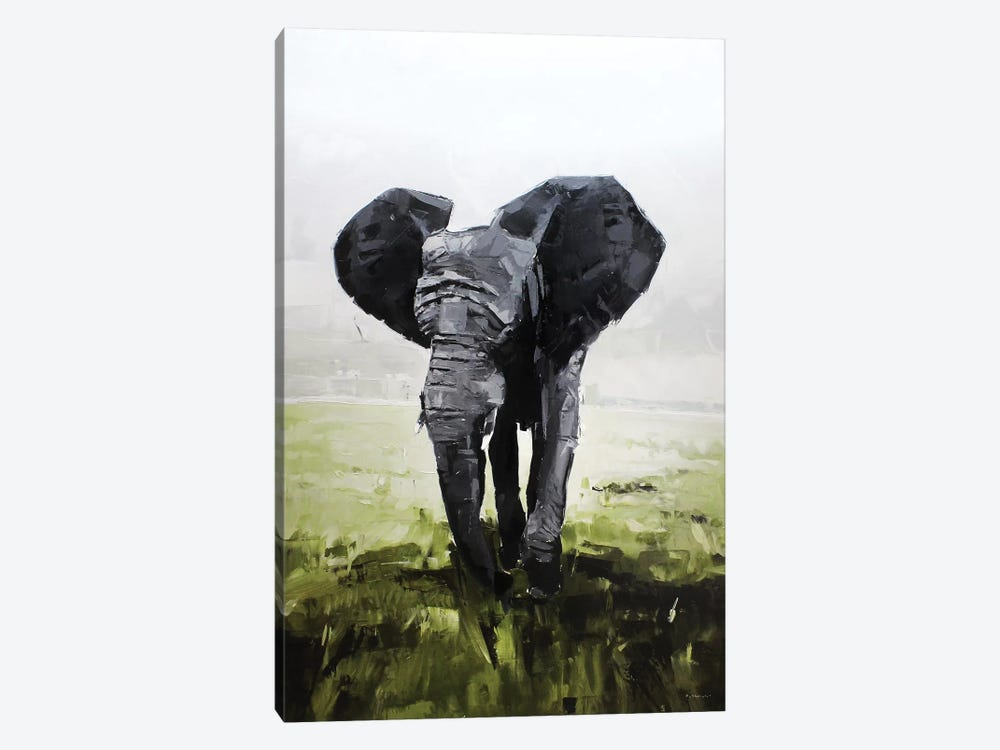 Elephant, South Africa by David Shingler 1-piece Canvas Art