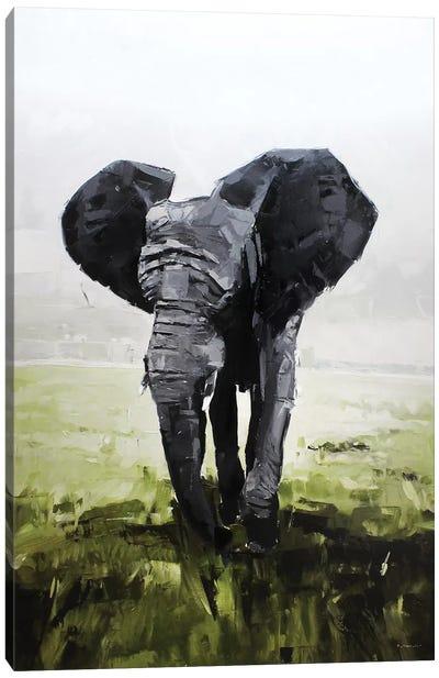 Elephant, South Africa Canvas Art Print