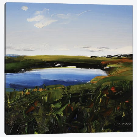Frisco Marsh Canvas Print #SHG18} by David Shingler Canvas Wall Art