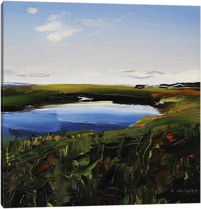 Frisco Marsh Canvas Art Print