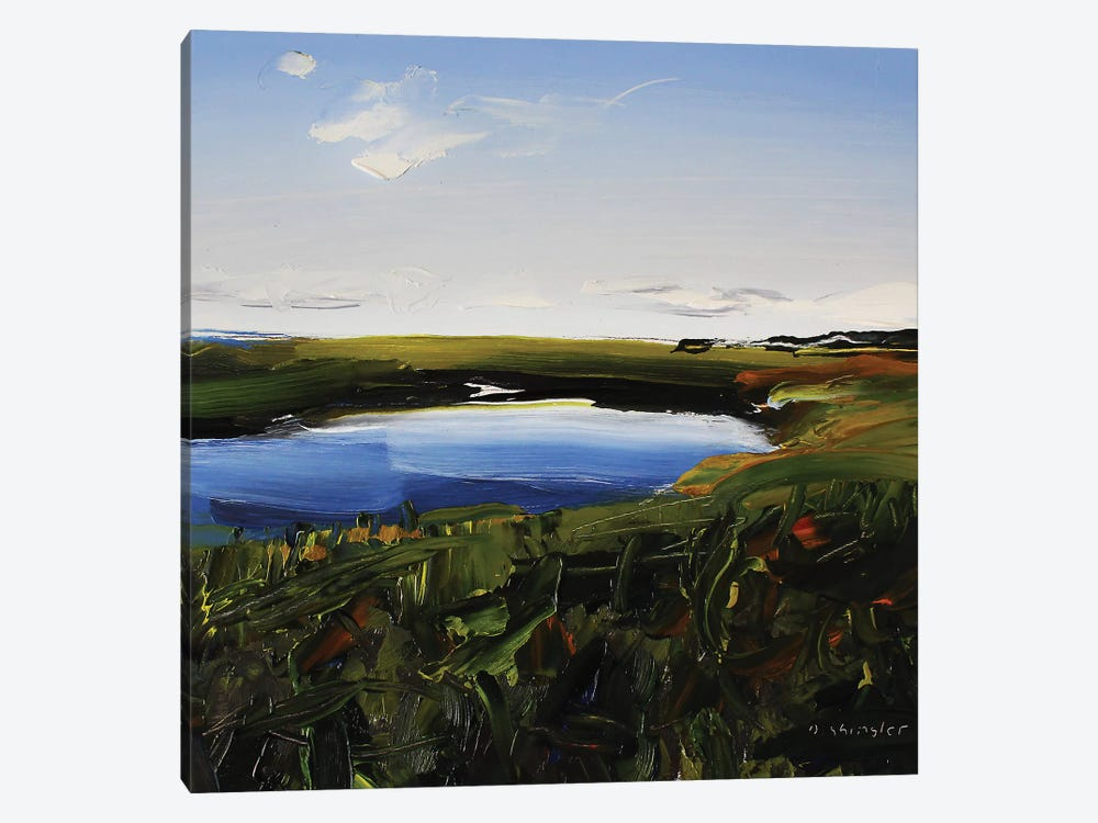 Frisco Marsh by David Shingler 1-piece Canvas Print