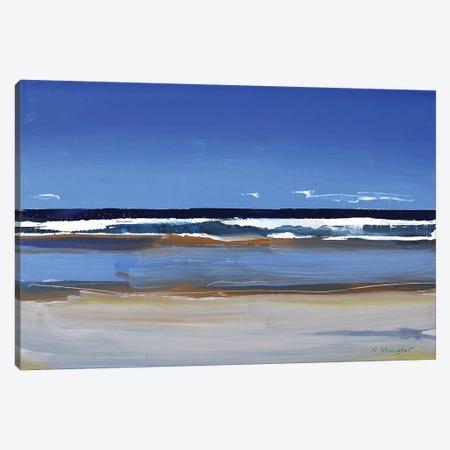 Hatteras Beach, NC I Canvas Print #SHG20} by David Shingler Canvas Print
