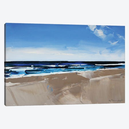 Hatteras Beach, NC II Canvas Print #SHG21} by David Shingler Canvas Print