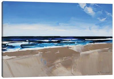 Hatteras Beach, NC II Canvas Art Print
