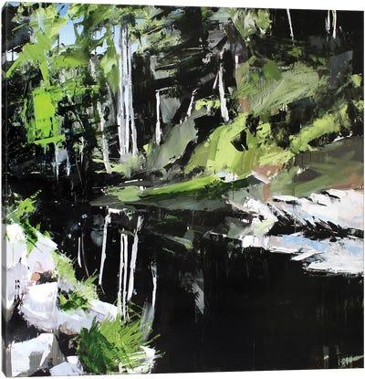Mitchell River Canvas Art Print